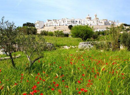 Trulli delicious: a taste of southern Italy in Puglia